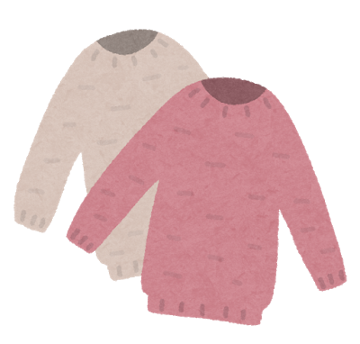 fashion_sweater_set.png