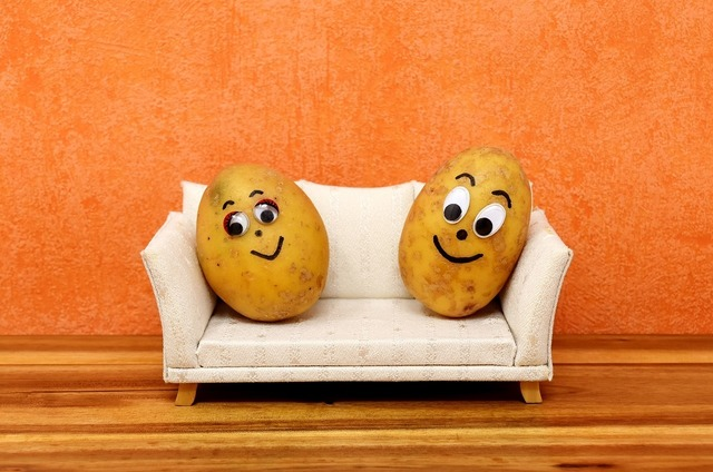 couch-potatoes-3116580_1280.jpg